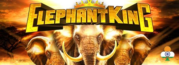 Elephant King review