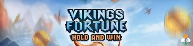 Vikings Fortune: Hold and Win review