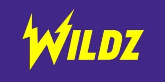 wildz casino logo review